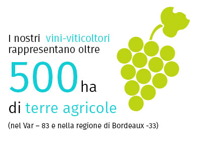 Vini & Viticoltura